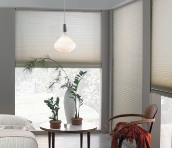 cellular shades in Minneapolis house