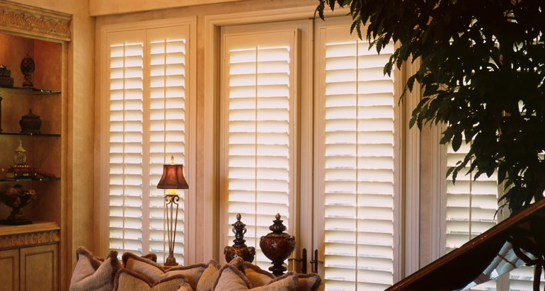 Plantation shutters on french door and window in Minneapolis living room