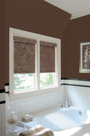 Minneapolis roller shades small
