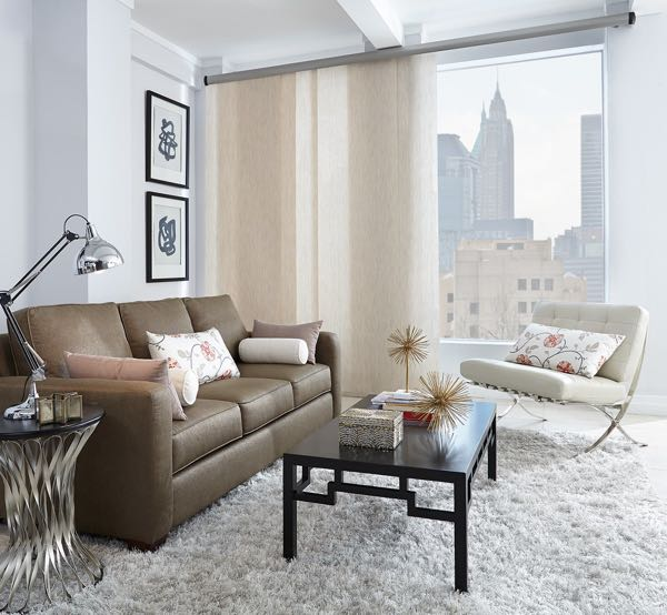 Minneapolis sliding barn door living room