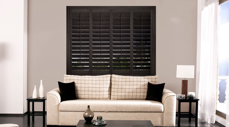 Minneapolis sitting room with plantation shutters.