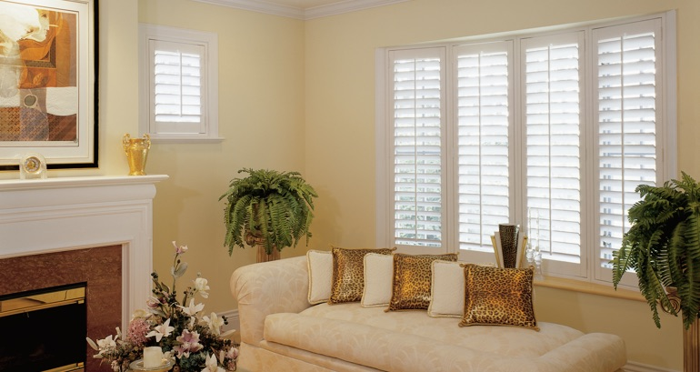 Minneapolis living room shutters