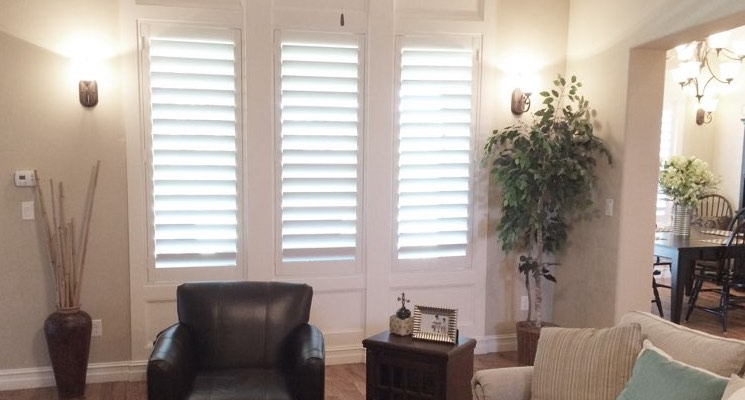 Minneapolis family room white shutters